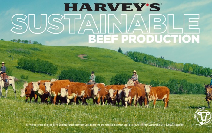 Harvey's partners with the Canadian Roundtable for Sustainable Beef to support sustainable beef production